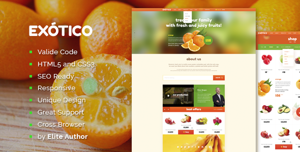Exotico Responsive HTML Template